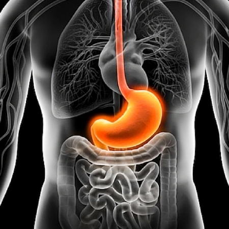 cancer-gastrico-avances