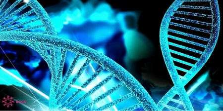 genetica-mutaciones-cancer-mama